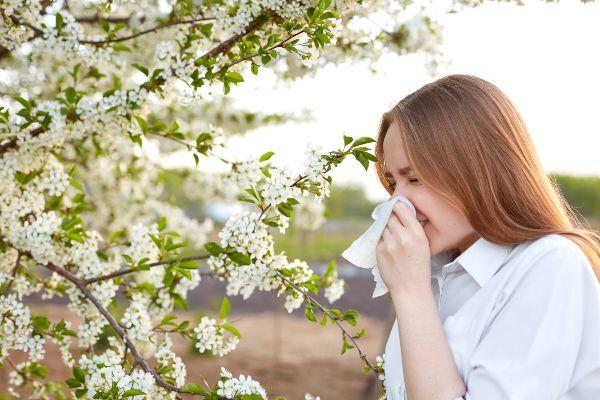pri senenem nahodu so pogoste navzkrižne alergije